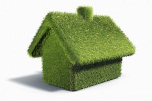 Grass house (Digital)